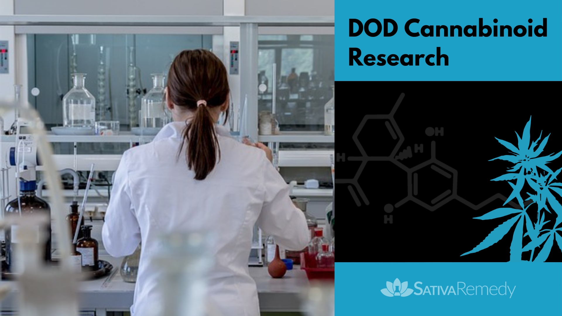 DOD Investing in Cannabinoids