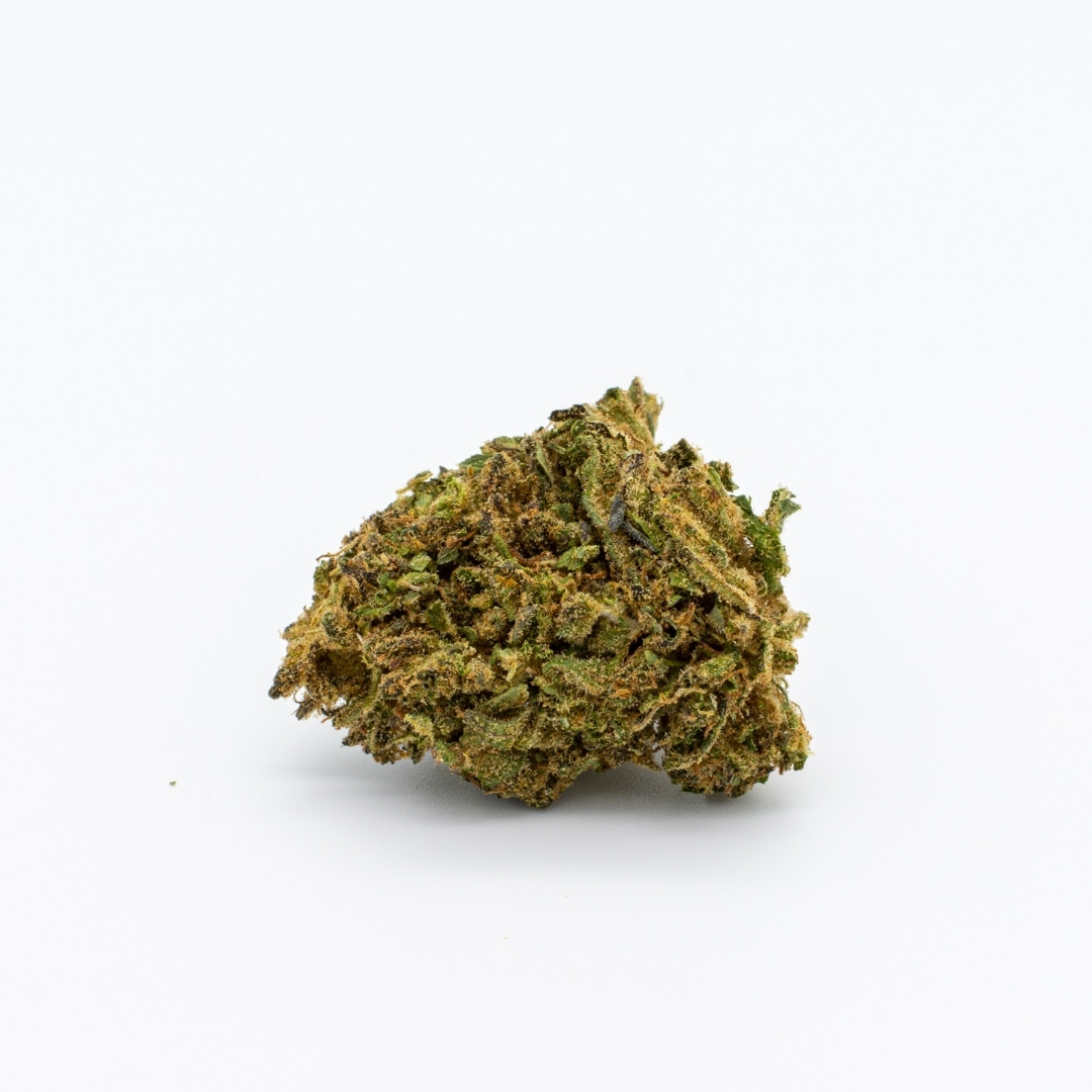 A flower of Sour Lifter laying down on a white background.